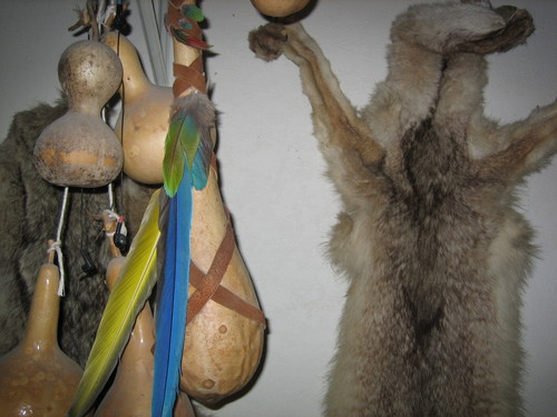 Coyote Skins and Gourds